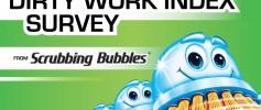 Scrubbing Bubbles Dirty Work Index Survey