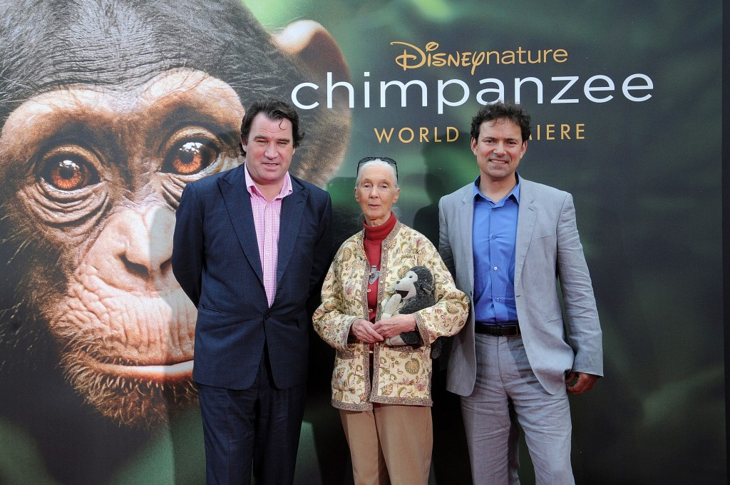 Behind the Scenes with Disneynature's Chimpanzee #MeetOscar ...