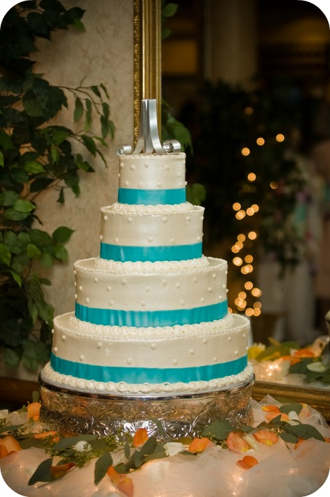 themed cakes nfl jaguars birthday elmo and a wedding cake carrie with children. Black Bedroom Furniture Sets. Home Design Ideas