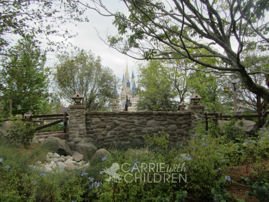 View of Cinderella's Castle from Disney New Fantasyland