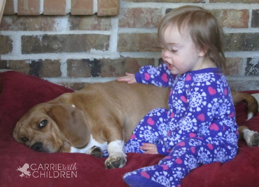 Penny and Molly Napping Healthy Kids and Healthy Pets Make a Loving Family with IAMS! **Giveaway**
