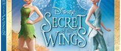 Secret of the Wings DVD