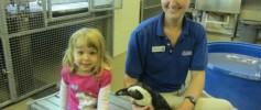 Maggie and Penguins at Florida Aquarium