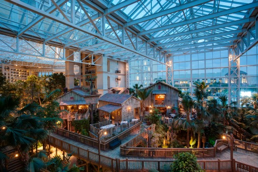image courtesy of Gaylord Palms
