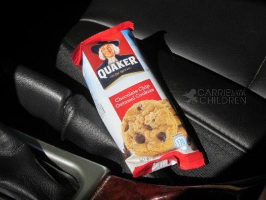 Quaker Chocolate Chip Cookies My Time