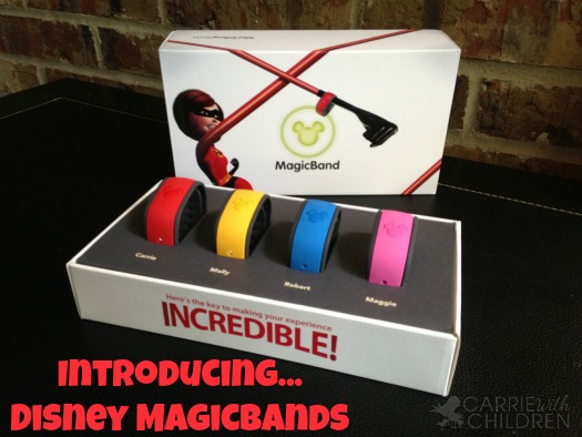 Video FAQs About Disney MagicBands #disney #magicbands #vlog
