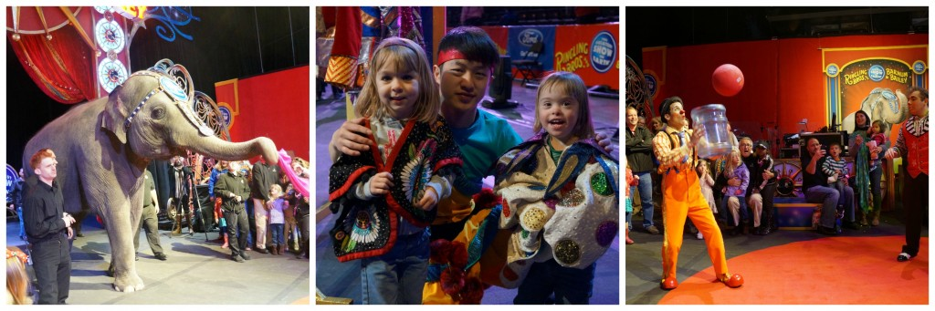 Ringling Bros. Ringmaster's Zone Collage