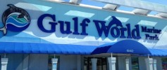 CWC Gulf World Marine Park in Panama City Beach Florida