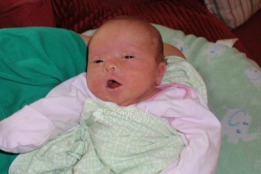 Molly McLaren Newborn